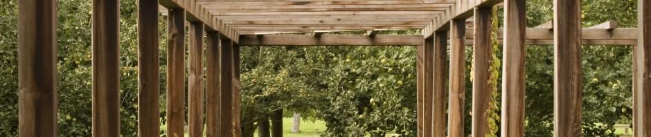 Bespoke pergola, garden structures, garden furniture in London, Brighton, Sussex