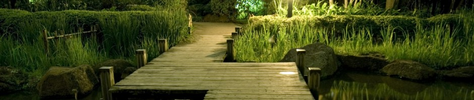 Garden Lighting and garden irrigation, watering systems in London, Sussex, Brighton
