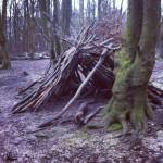 Natural camp