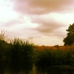 River Ouse moody summer