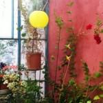 garden artisian conservatory room