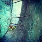 Barbara Hepworth sculpture and garden close up