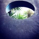 Barbara Hepworth sculpture and garden palms
