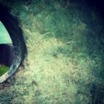 Barbara Hepworth sculpture peeking through