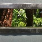 The SMART vision garden
