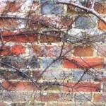 Garden Wall at Bateman's