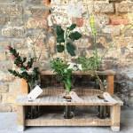 Sissinghurst's Winter interest display