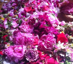 table of roses