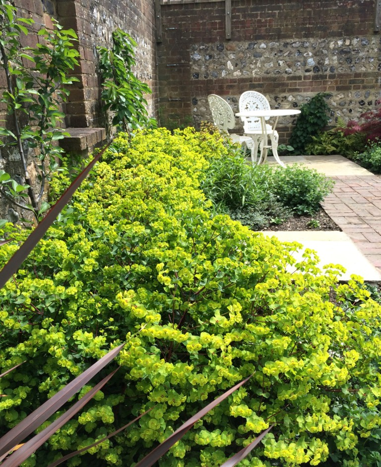 Courtyard garden with antique stone setts and euphorbia for Garden design east sussex