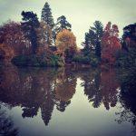 sheffield-park-tree-reflections