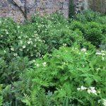 Firle Place Herb Garden