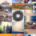 Image of Simon Scott Landscaping instagram account @gardentastic