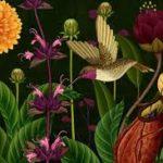 Still from Story of Flowers animation by Azuma Makoto Kaju Kenkyusho