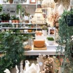 Image of the interior of From Victoria, shop in Lewes